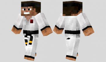 Martial Artist Skin para Minecraft