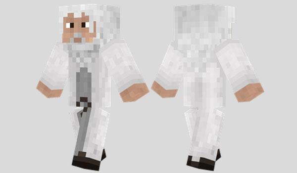 Gandalf Skin