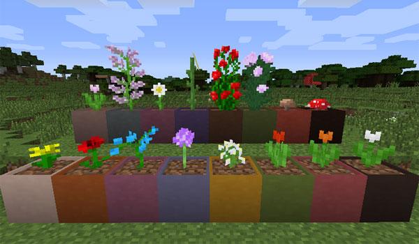 imagen donde vemos macetas de colores en las que podemos plantar flores y plantas.