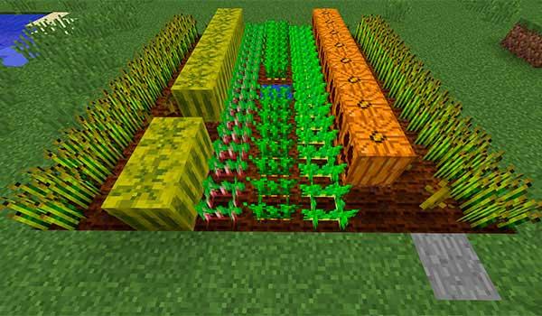 Huerto en Minecraft
