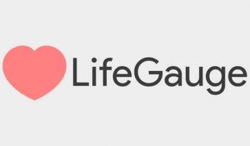 LifeGauge Mod para Minecraft 1.8.9