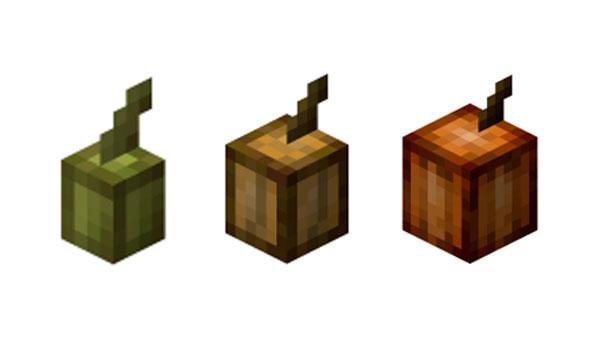 Cómo plantar cacao en Minecraft