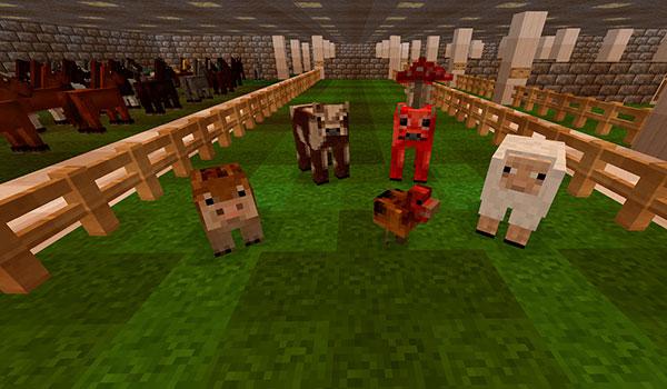 imagen donde vemos un corral, con cerdos, pollos, vacas y ovejas. Todo decorado con las texturas del pack forgotten lands 1.10 y 1.9.
