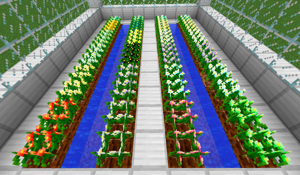 imagen donde podemos ver una plantación con todos los tipos de plantas y cultivos que permite el mod mystical crops 1.10 y 1.10.2.