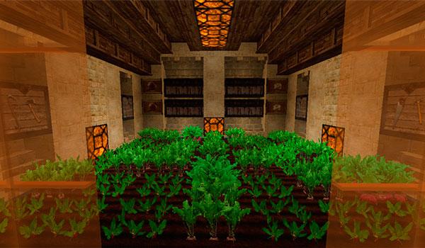 Imagen donde podemos ver una plantación de remolachas. Todo decorado con las texturas LB Photo Realism 1.16, 1.15 y 1.12.