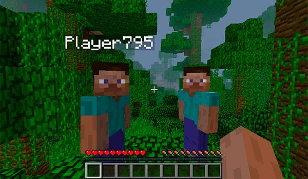 Hide Names Mod para Minecraft 1.12