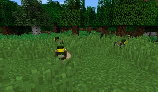 Imagen donde podemos ver una familia de patos deambulando en Minecraft, gracias al mod Duck Craft 1.12, 1.12.1 y 1.12.2.