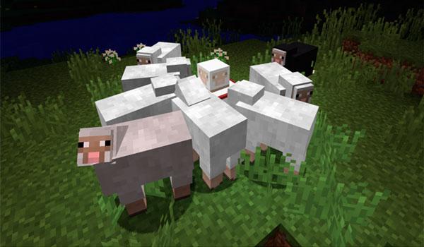 Imagen donde podemos ver a grupo de ovejas que se sienten atraídas por uno de los bloques que añade el mod Lights and Lures 1.12, 1.12.1 y 1.12.2.