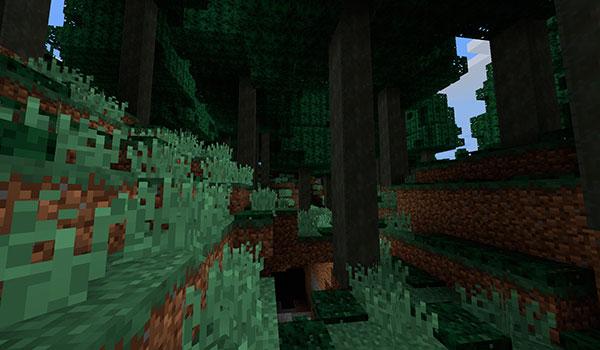 Imagen donde podemos ver un jugador explorando el nuevo bioma, formado por grandes árboles, que añade el mod Sugi Forest 1.12, 1.12.1 y 1.12.2.