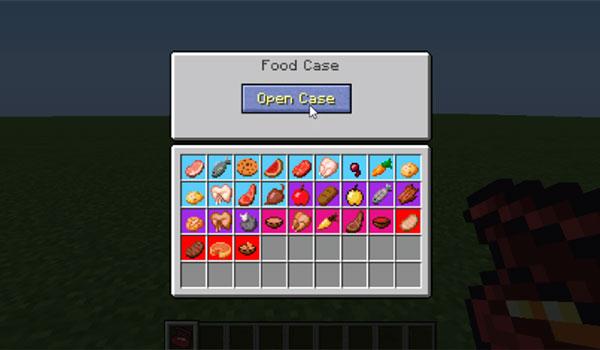 Cases 1.12.2