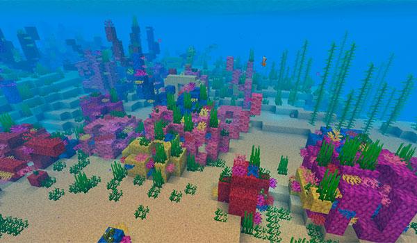 Coral Minecraft