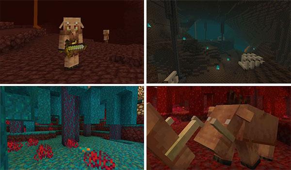 Futura actualización Minecraft 1.16