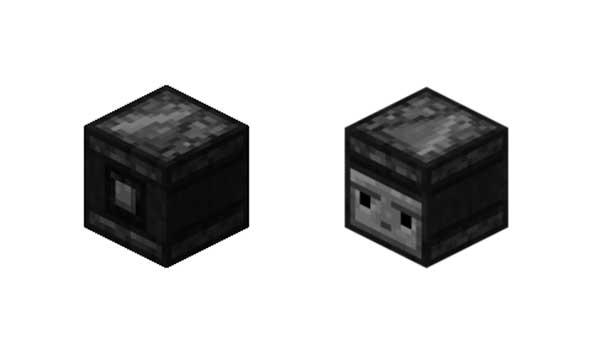 Observador Minecraft