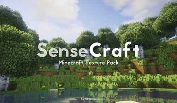 SenseCraft