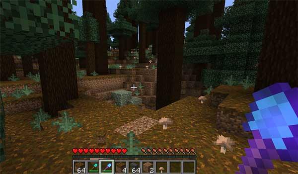 Imagen donde podemos ver cómo conseguir Podzol en Minecraft