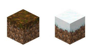 Podzol Minecraft