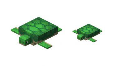 Tortugas Minecraft