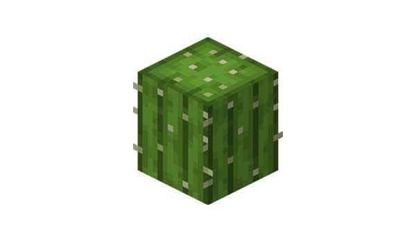 Cactus Minecraft
