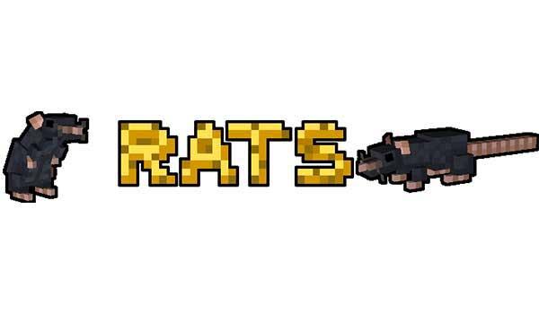 Rats 1.16.1, 1.16.3, 1.16.4 y 1.16.5