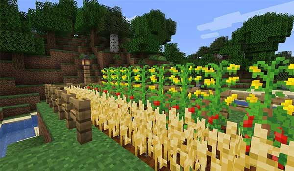 Imagen donde podemos ver una zona de cultivos, donde hay plantados algunos de los nuevos alimentos que ofrece el mod Simple Farming 1.16.1, 1.16.3 y 1.16.4.