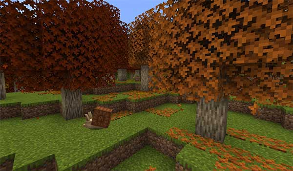 Imagen donde podemos ver un paisaje de otoño, con un caracol paseando, generado a partir del mod Autumnity 1.16.1, 1.16.3 y 1.16.4.