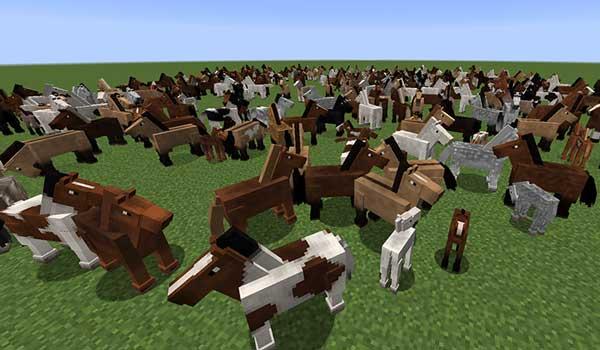 Imagen donde podemos ver la variedad de especies de caballos que  pueden generarse al instalar el mod Realistic Horse Genetics Mod 1.16.1, 1.16.3 y 1.16.4