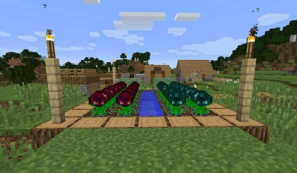 Imagen donde podemos ver un huerto, en una aldea, donde se están cultivando los nuevos cultivos que ofrece el mod Resynth 1.16.1, 1.16.2, 1.16.3 y 1.16.4.