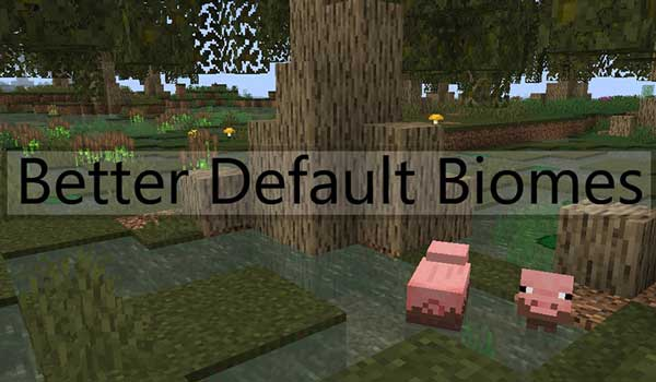Better Default Biomes 1.16.3, 1.16.4 y 1.16.5