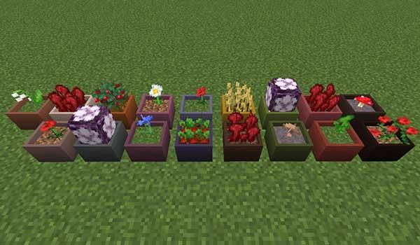 Botany Pots 1.16.1, 1.16.2 y 1.16.3