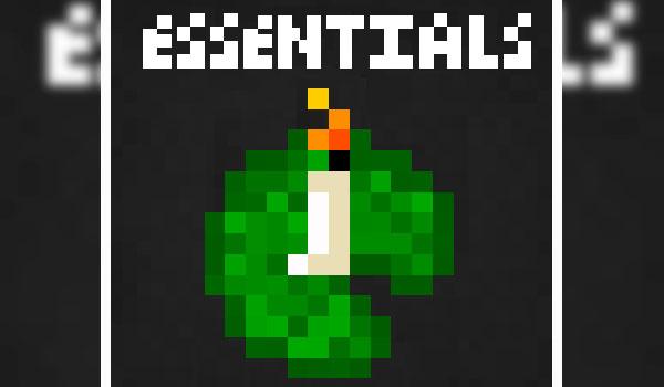 Essentials 1.16.1, 1.16.2, 1.16.3 y 1.16.4