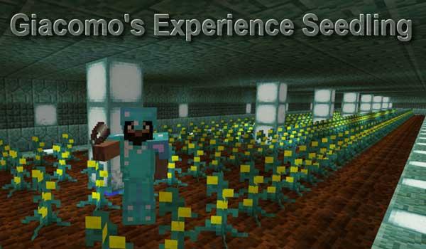 Experience Seedling 1.16.3