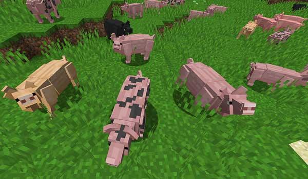 Imagen donde podemos ver el nuevo aspecto que tendrán los cerdos, tras instalar el mod Better Animal Models 1.16.3 y 1.16.4.
