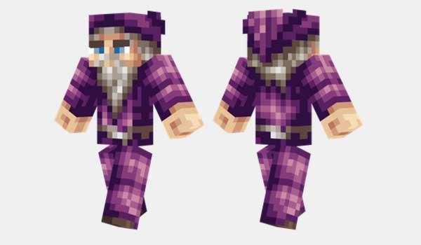 Purple Wizard Skin