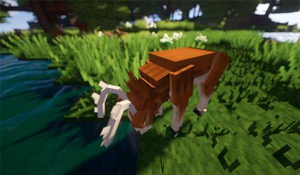 Imagen donde podemos ver cómo bebe agua uno de los nuevos animales, en este caso un ciervo, que añade el mod Better Animals Plus 1.16.3, 1.16.4 y 1.16.5.