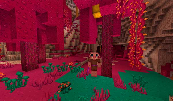 Imagen donde podemos ver el aspecto que tendrá el bioma Crimson Forest al instalar el paquete de texturas Kawaii World 1.16.