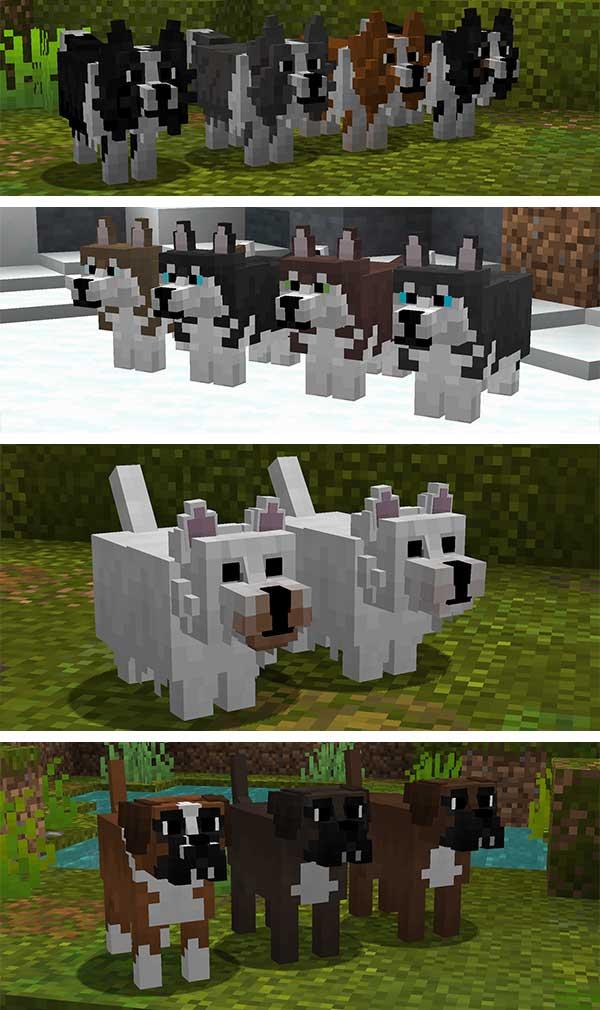 Imagen compuesta donde podemos ver algunas de las razas de perro que podremos encontrar tras instalar el texture pack Better Dogs 1.16, 1.15 y 1.12.