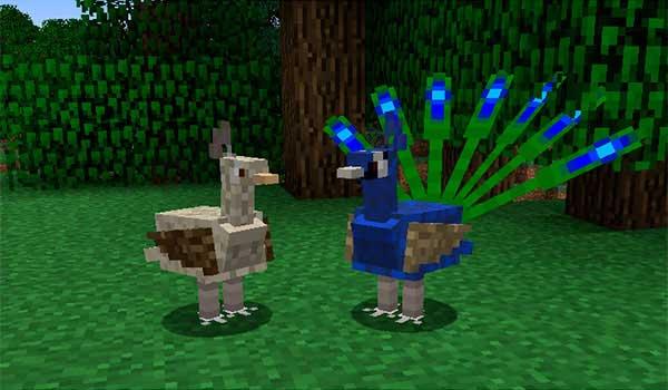 Imagen donde podemos ver un ejemplo de dos especies de pájaros generadas por el mod Exotic Birds 1.16.4.