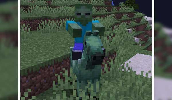 Zombie Horse Spawn 1.16.5
