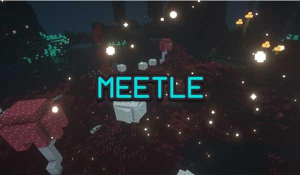 Meetle 1.16.4 y 1.16.5