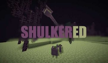 Shulkered 1.16.3, 1.16.4 y 1.16.5
