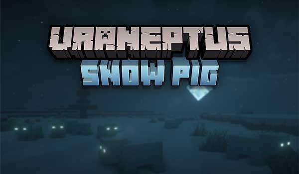 Snow Pig 1.16.4 y 1.16.5