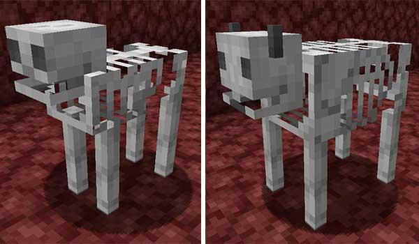 Bones 1.16.1, 1.16.3, 1.16.4 y 1.16.5