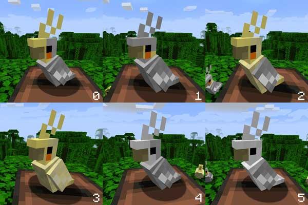 Imagen donde podemos ver algunas de las variantes de cacatúas ninfa que encontraremos al instalar el mod The Parakeet 1.16.1, 1.16.2, 1.16.3, 1.16.4 y 1.16.5.