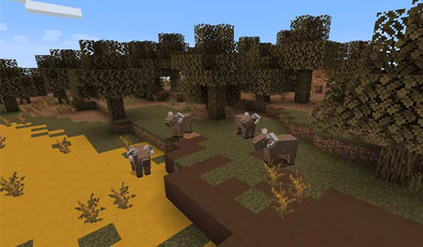 Imagen donde podemos ver varios ejemplares del borrego cimarrón añadidos por el Betterlands 1.16.5 mod.