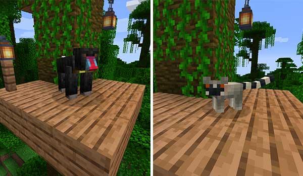 Imagen donde podemos ver dos ejemplos de las especies de primates que el mod Monke Madness 1.16.5 se encarga de agregar.